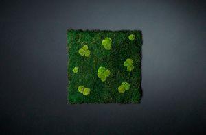 Flatmoss con Polemoss, Panneau modulaire pour mur végétal