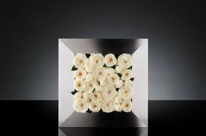 Mix Rose frame, Panneau décoratif avec des roses