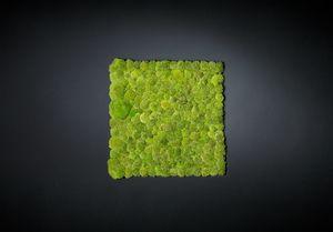 Polemoss, Mur végétal décoratif